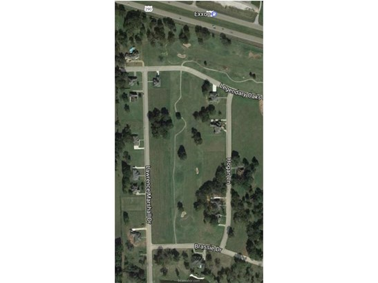 Urban Residential Lots - Hempstead, TX (photo 4)