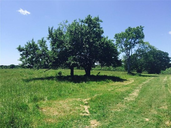 Rural Improv/Unimprov - College Station, TX (photo 1)