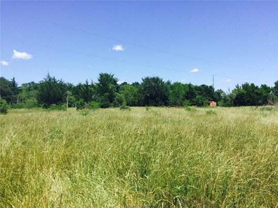 Rural Improv/Unimprov - College Station, TX (photo 3)