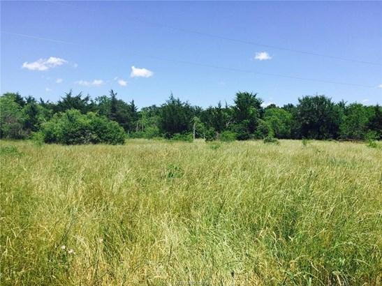 Rural Improv/Unimprov - College Station, TX (photo 4)
