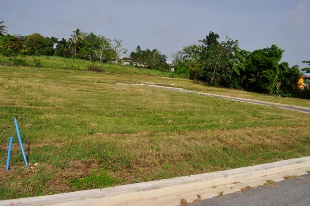 Rosegate Meadows Phase 3 Lot 11, St. John - BRB (photo 5)