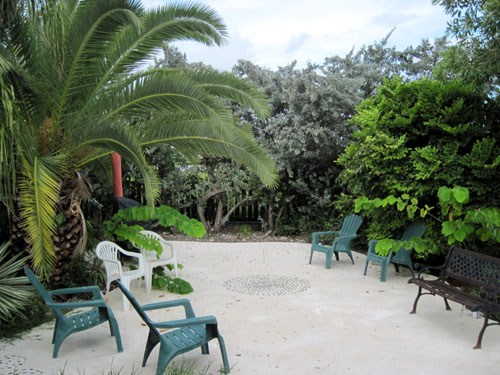 Cane Gardens, St. Philip - BRB (photo 4)