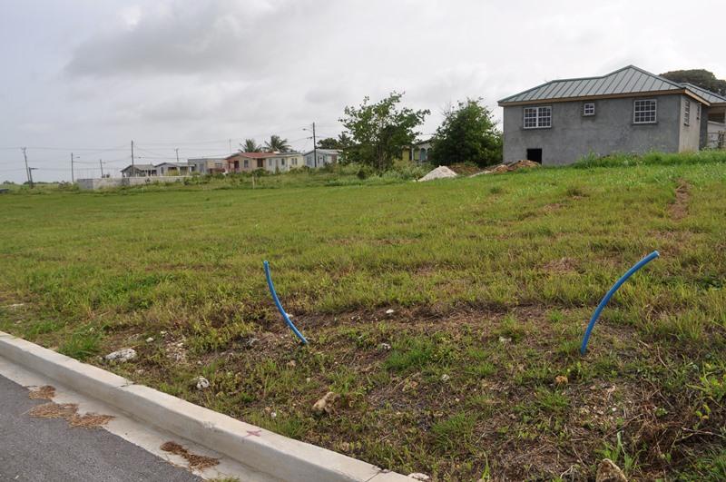 Rosegate Meadows Phase 3 Lot 24, St. John - BRB (photo 1)