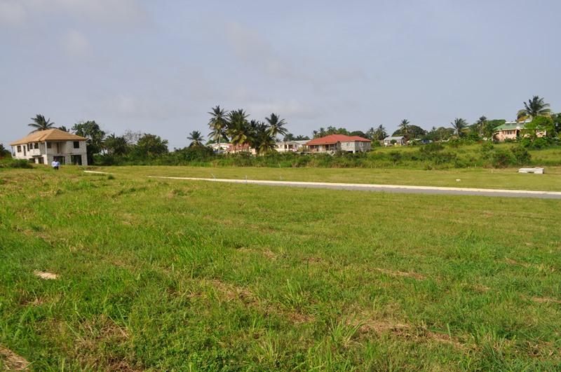 Rosegate Meadows Phase 3 Lot 24, St. John - BRB (photo 3)