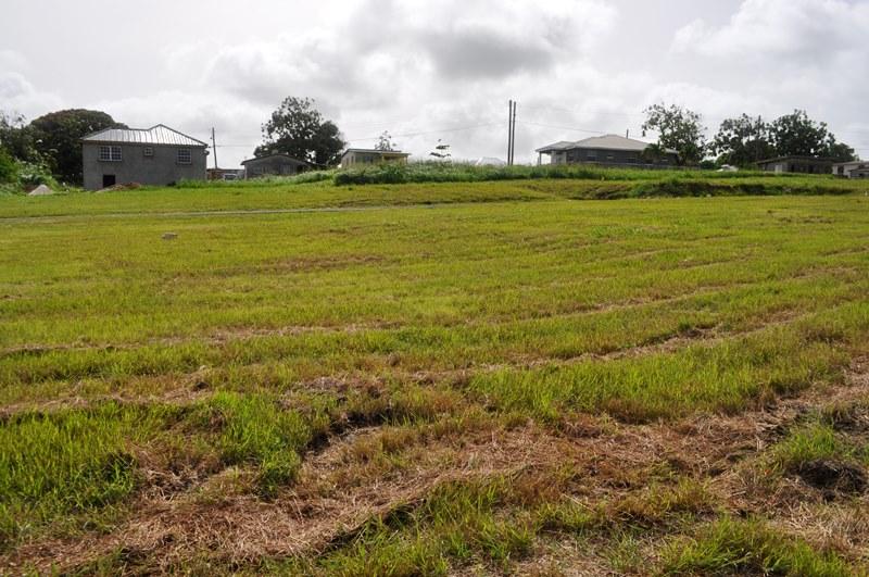 Rosegate Meadows Phase 3 Lot 14, St. John - BRB (photo 1)