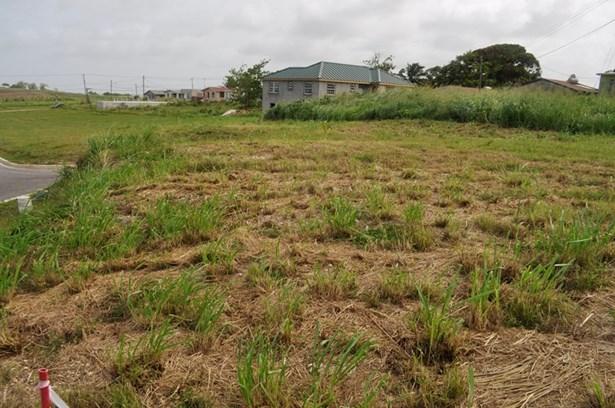 Rosegate Meadows Phase 3 Lot 22, St. John - BRB (photo 3)