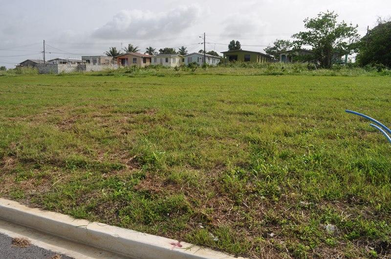 Rosegate Meadows Phase 3 Lot 26, St. John - BRB (photo 1)