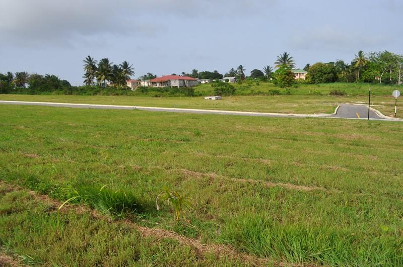 Rosegate Meadows Phase 3 Lot 26, St. John - BRB (photo 3)