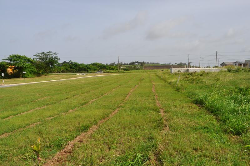 Rosegate Meadows Phase 2 Lot 25, St. John - BRB (photo 2)