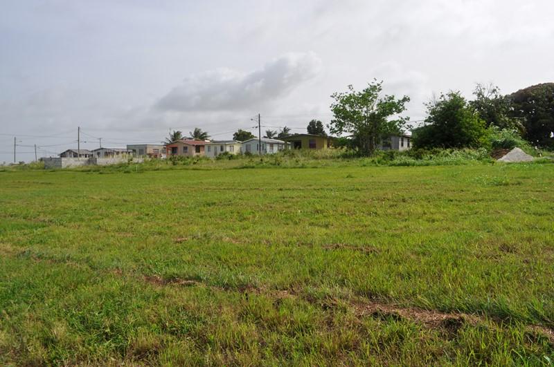 Rosegate Meadows Phase 2 Lot 25, St. John - BRB (photo 4)