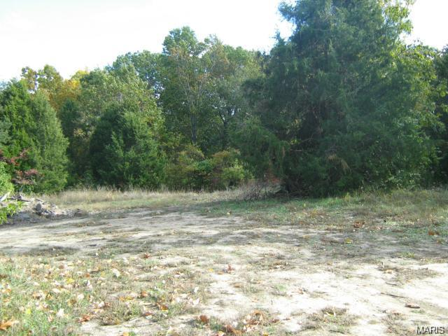 Single Family,Residential Lots, None - Wildwood, MO (photo 2)