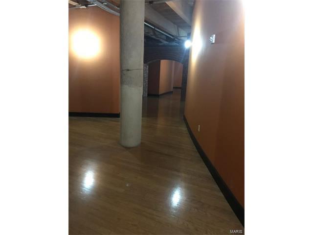 Condo,Condo/Coop/Villa, Loft - St Louis, MO (photo 4)