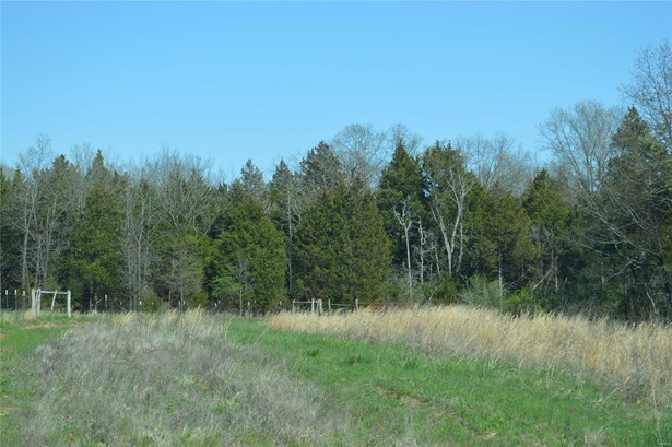 Agricultural Land,Rural, None - Cedar Hill, MO (photo 1)