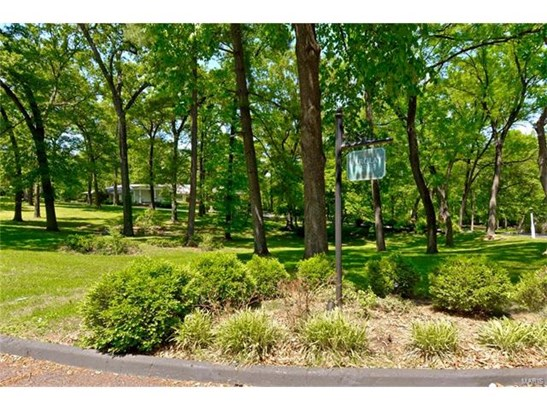 Dwelling, City,Single Family,Residential Lots - Ladue, MO (photo 5)