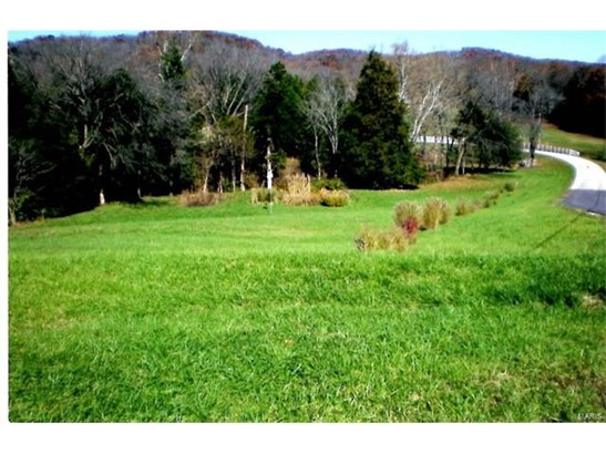 Rural,Single Family,Residential Lots, None - Cedar Hill, MO (photo 1)