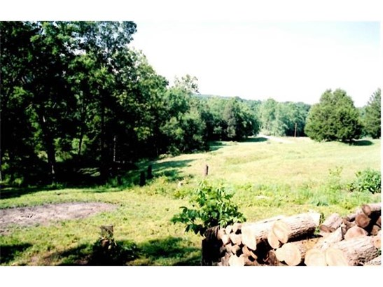 Rural,Single Family,Residential Lots, None - Cedar Hill, MO (photo 4)