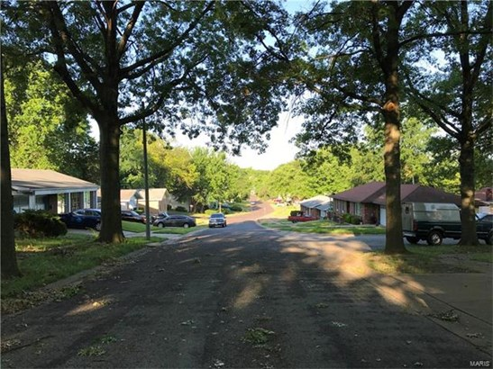 Multi-Family,Residential Lots, None - Jennings, MO (photo 4)
