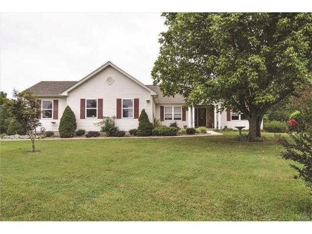 Residential, Traditional,Ranch - De Soto, MO (photo 1)