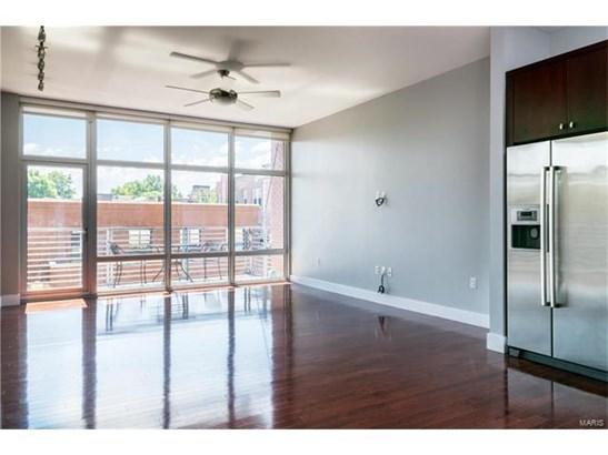 Condo,Condo/Coop/Villa, Contemporary,Garden Apartment - St Louis, MO (photo 4)