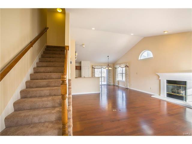 Residential, Contemporary - Ballwin, MO (photo 4)