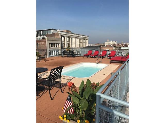 Condo,Condo/Coop/Villa, Loft - St Louis, MO (photo 2)