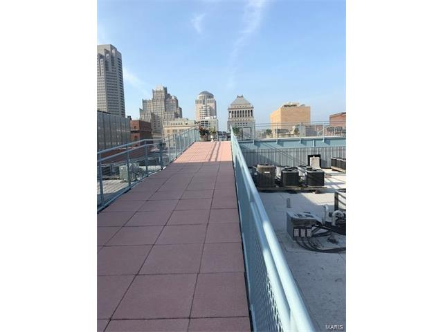 Condo,Condo/Coop/Villa, Loft - St Louis, MO (photo 5)