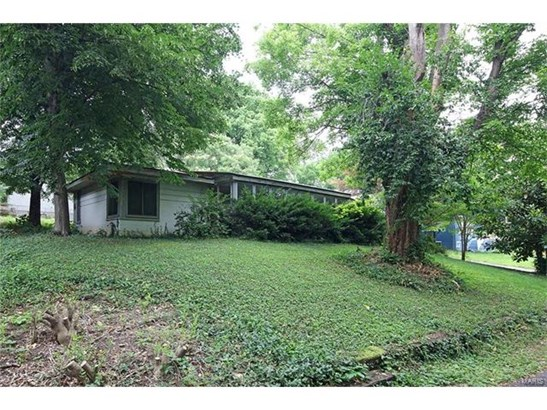 Dwelling, Single Family,Residential Lots - St Louis, MO (photo 1)