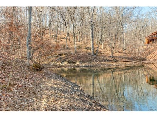 City,Single Family,Residential Lots, None - Innsbrook, MO (photo 3)