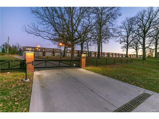 Traditional,Townhouse, Other,Condo/Coop/Villa - St Louis, MO (photo 1)