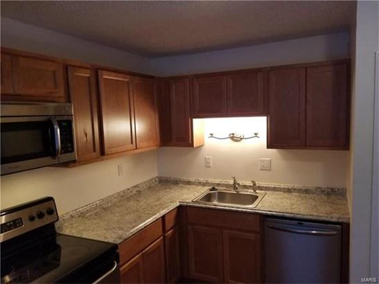 Residential - Fenton, MO (photo 5)