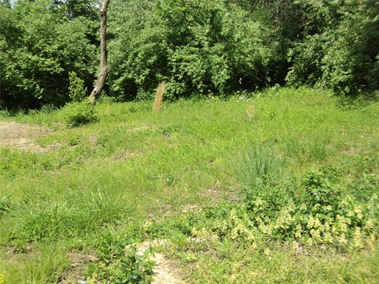 Dwelling, Single Family,Residential Lots - St Louis, MO (photo 2)