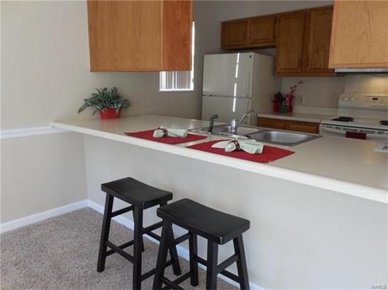 Condo,Condo/Coop/Villa, Traditional,Ranch - St Louis, MO (photo 4)