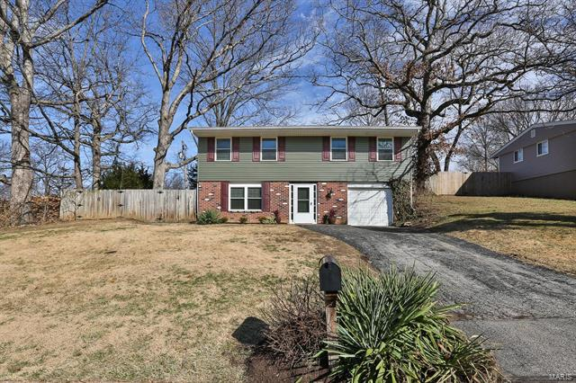 Residential, Traditional,Raised Ranch - Ballwin, MO (photo 1)