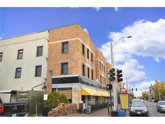 Condo,Condo/Coop/Villa, Contemporary,Townhouse - St Louis, MO (photo 1)