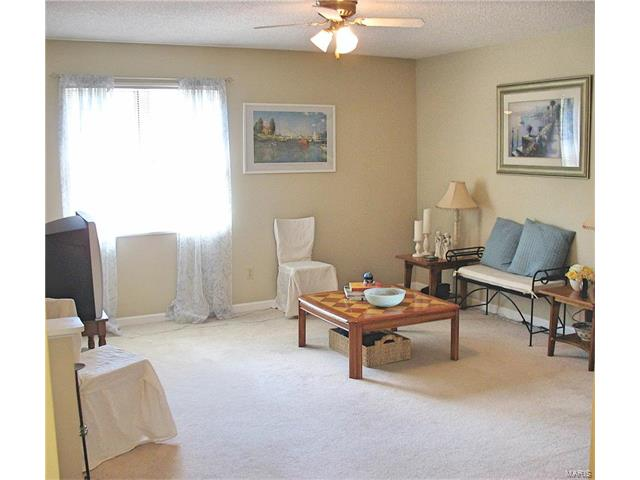 Condo,Condo/Coop/Villa, Traditional - Brentwood, MO (photo 2)