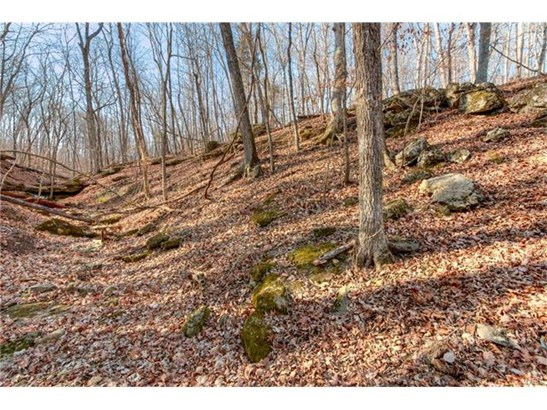 Single Family,Residential Lots, None - Innsbrook, MO (photo 5)
