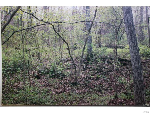 Single Family,Residential Lots, None - Innsbrook, MO (photo 3)