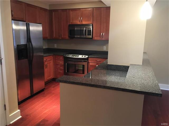 Condo,Condo/Coop/Villa, Historic,Garden Apartment - St Louis, MO (photo 4)