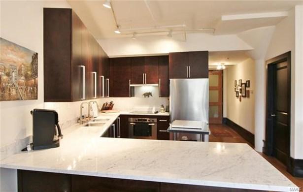 Condo,Condo/Coop/Villa, Contemporary,Loft - St Louis, MO (photo 4)