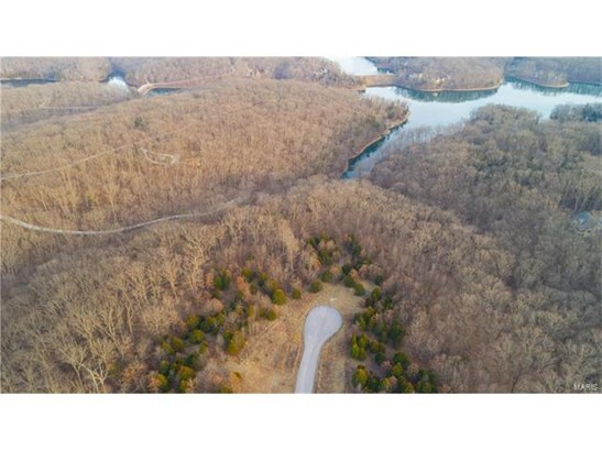 Single Family,Residential Lots, None - Innsbrook, MO (photo 4)