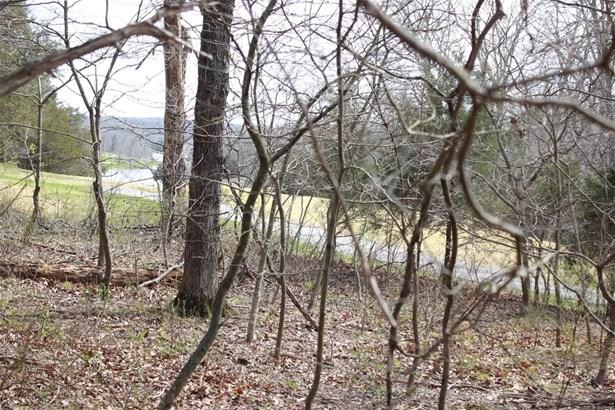 None, Single Family - Innsbrook, MO (photo 2)