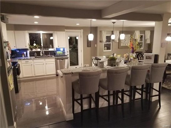 Residential, Contemporary,Traditional,Tri-level - St Louis, MO (photo 3)