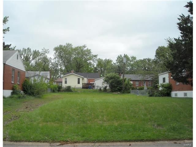 Single Family,Residential Lots, None - St Louis, MO (photo 1)