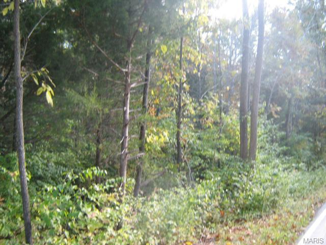 Single Family,Residential Lots, None - Wildwood, MO (photo 1)