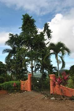 The Tree House, Ojochal - CRI (photo 4)