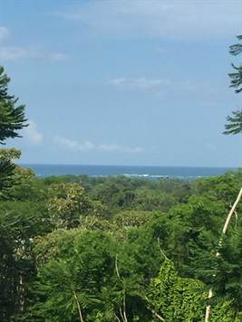 3 Home Package With Tons Of Property, In The Heart, Uvita - CRI (photo 1)