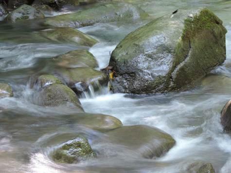 Wilderness Retreat, Wellness Retreat, Or Commercia, Ventanas - CRI (photo 2)