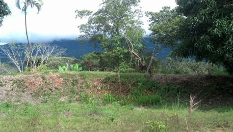 Unparalled 55,000m2 Of Ocean View Property On Pere, Uvita - CRI (photo 4)