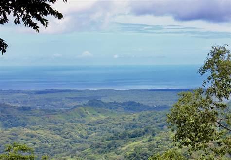 Ocean View Home Overlooking The Osa Penninsula, Cortes - CRI (photo 1)