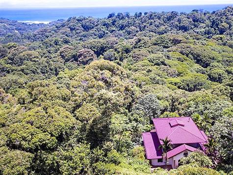 10 + Acres 4 Bedroom White Water Views In Dominica, Dominical - CRI (photo 4)